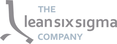 theleansixsigmacompany.in